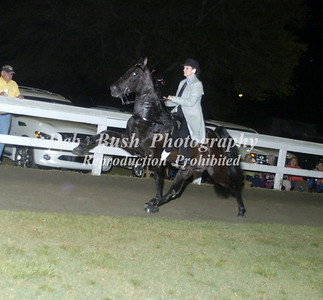CLASS 23A ADULT WALKING PONY SPECIALTY