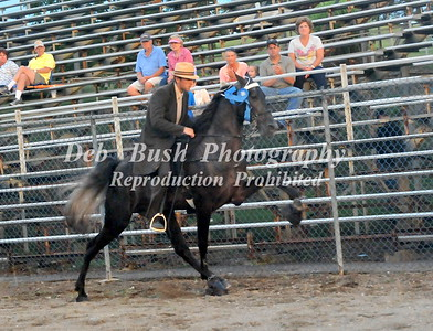 CLASS 17 -- 3 YR OLD OPEN SPECIALTY