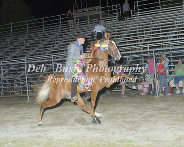 CLASS 28  WALKING HORSE STAKE SPECIALTY