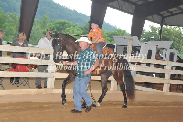 WAYNESVILLE LIONS CLUB HORSE SHOW  JULY 18  2015