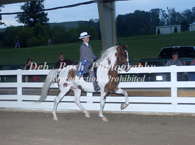 CL 15  JUV COUNTRY PLEASURE  17 & UNDER
