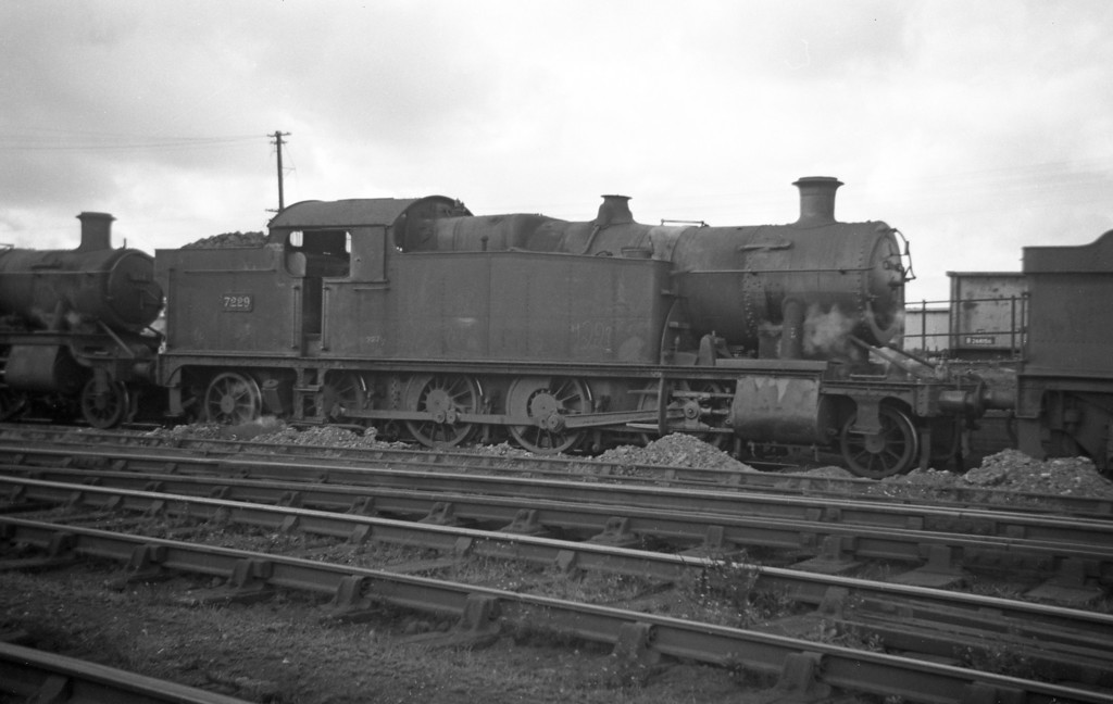 7229, Severn Tunnel Junction Shed, August 24, 1963.