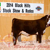 Hereford Lot 10