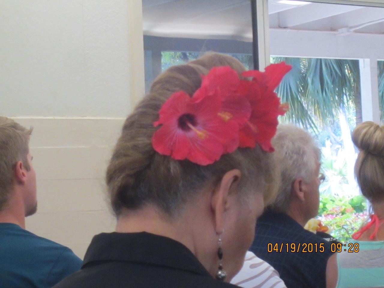 beautiful flower on Makerita