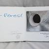 AirForest3