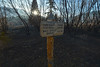 The trail head sign and blackened vegetation greet visitors to the Cub Lake Trail on Tuesday. Fire crews burned out the area to stop the spread of the Fern Lake Fire.
