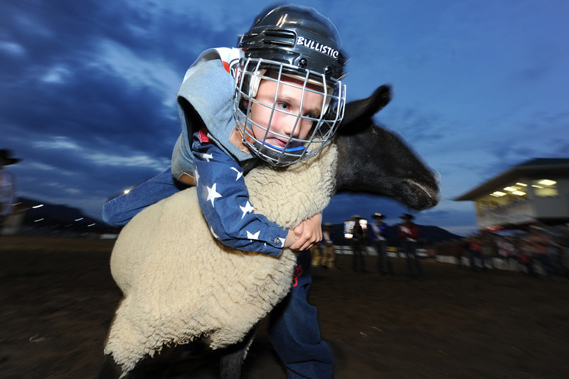Walt Hester | Trail Gazette<br /> Luke Walker hangs on while his sheep twists and dodges during Friday night's mutton busting competition. Children under 50 pounds are invited each night to compete for a life-size trophy and the thrill of the cheering crowd at the Rooftop Rodeo.
