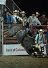 Walt Hester | Trail-Gazette<br /> Maggie Parker starts well on her ride during Tuesday's Rooftop Rodeo. Parker is the first woman to earn a check bull riding in the PRCA, though she was thrown on Tuesday night.