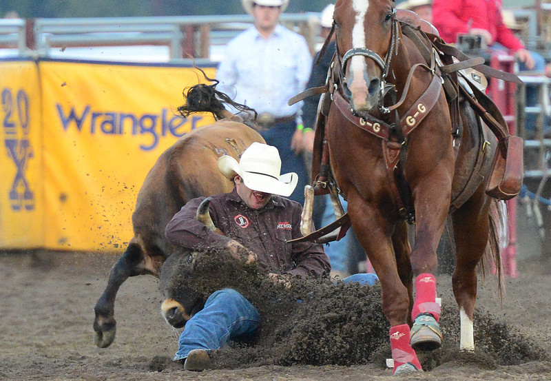 Walt Hester | Trail-Gazette<br /> Riley Krassin of Lander, Wyo., puts on the brakes during Steer Wrestling on Tuesday evening. Krassin started a bit too soon, breaking the barrier and earning a 10-second penalty.