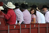 "Walt Hester | Trail-Gazette<br /> Members of the Greeley Stampede rodeo committee await their grand entry at the Rooftop Rodeo on Wednesday. The ""Roof"" has had such success over the years that other big rodeos love to visit."