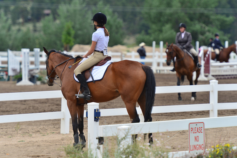 A rider awaits her turn at the low and training class of jumpers on Wednesday.