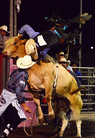 A cowboy is launched from the back of a bucking bull on Thursday night. The bulls scored a shutout against the cowboys at the Rooftop Rodeo, but the cowboys have a few more chances as the rodeo runs through the weekend.
