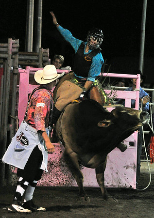 Local resident Ryan Franklin flies out of the gate before being thrown to the ground during Friday night's bull riding. The Rooftop Rodeo thrilled visiters and locals alike this last week with plenty of edge-of-the-seat excitement.