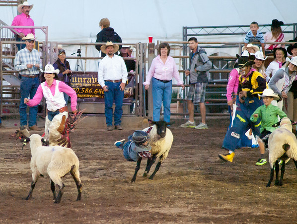 The sheep got the best of this run last Wednessday at the Rooftop Rodeo.