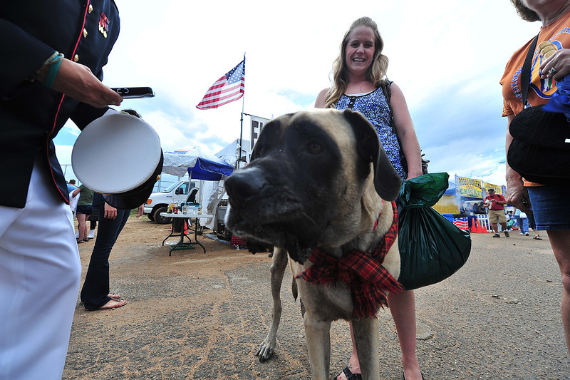Heather Larzalare, of Dallas, and her English Mastive, Marty, attract attention at the ScotFest on Friday. The mastiff is one of the largest dog breeds.