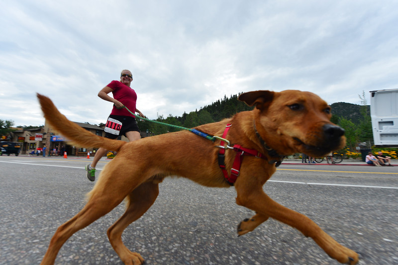 Gwen Abbott Asmussen and her fuzzy companion race up Elkhorn Avenue on Saturday. Runners were invited to bring dogs for the one-mile run.