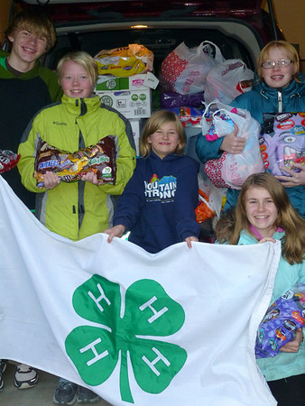Members of the Estes Park Soaring Eagles 4-H Club pose with the more than 300 pounds of candy donated by Larimer sister clubs.