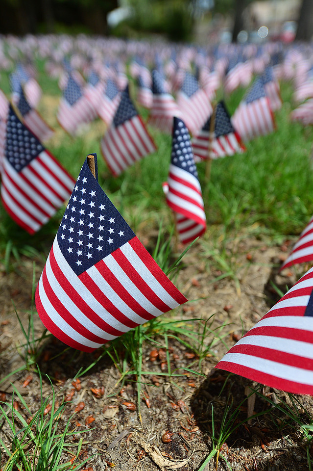 "Miniature flags honoring lives of fallen soldiers from the ""War on Terror"" cover the lawns around the Town Hall over the Memorial Day Weekend."