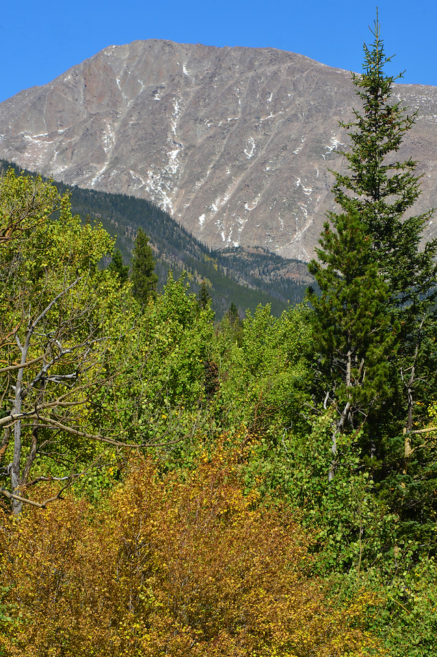 New snow clings to crags on Mount Fairchild above aspens that could change to autumn color at any moment. The area aspen, for the most part, should change in the next week.