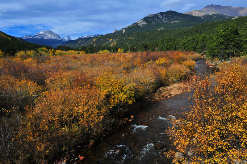 Wild Basin looks ablaze with the colors of autumn. Although the national park is closed, drivers can stop to admire it from the highway.