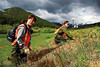 Not even the national park escapes yard work. Casey Montoya, left, and Shannon Thompson pull cheatgrass in the Beaver Point section of Rocky Mountain National Park on Monday. Photo by Walt Hester.