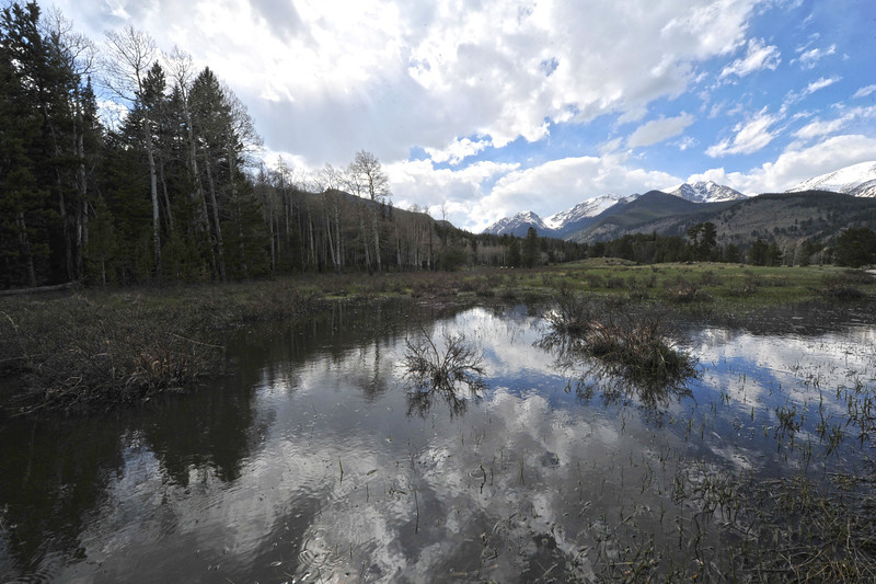 A small temperary pond reflects mountains and clouds on Wednesday. The small, shallow pond forms along the road in Horseshoe Park in spring at the start of the runoff season.