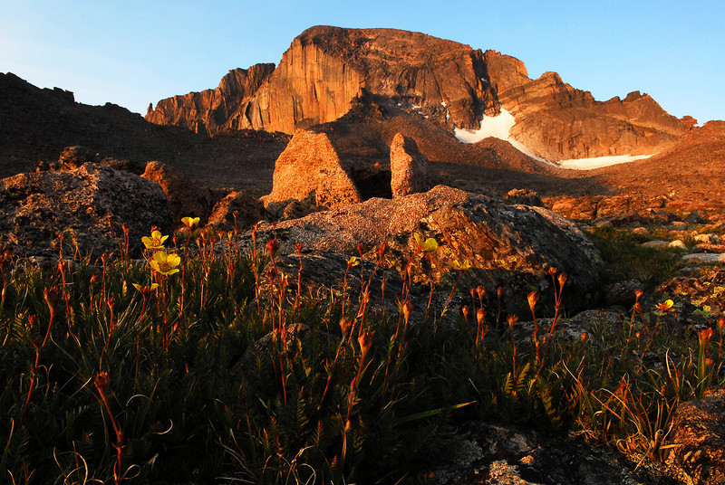 Early morning light bathes the Boulder Field in warm color.