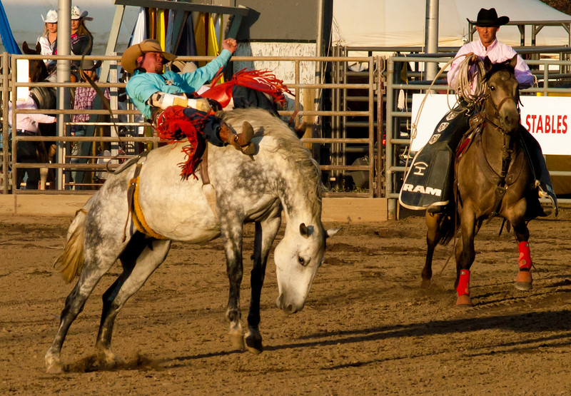 16epbareback.jpg Bareback bronc riding is one of the events at the Rooftop Rodeo.