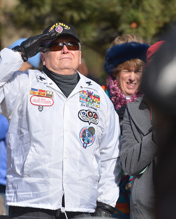 Decorated veteran Ed Richards solutes as the flag is raised over te Veterans' Day service at the Estes Valley Memorial Gardens on Sunday. Richards was awarded seven Purple Hearts over the course of the Korean and Vietnam wars.