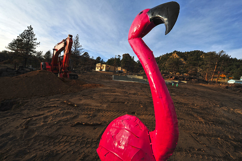 A big metal flamingo stands guard over new construction in Woodland Heights on Monday. New construction is popping up all over the area, including rebuilding after this June's fire.