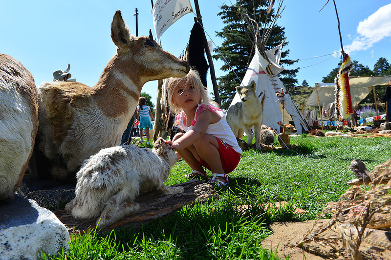 Walt Hester | Trail-Gazette<br /> Kaitlin Heintz, 6, Castle Rock, inspects a few stuffed creatures at the festival on Sunday. Heritage Festival is the closest most children would get to these animals.