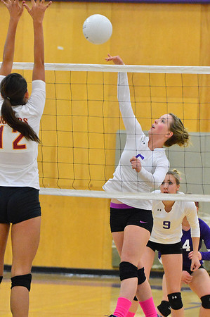 Becky Reilly hits against Brush last week. The Ladycats have sunk to nineth in the 11-team Patriot League.