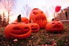 Jack-o-lanterns seem a bit worse for ware outside of Kind Coffee on Thursday. Pumpkins are a favorite post holiday treat for elk and deer.