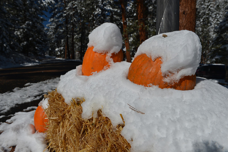 Snow decorates decorations near Fall River Road on Friday. As often happens, snow swept in before Halloween, but this year, melted off before trick-or-treating.