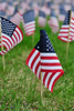 Walt Hester | Trail Gazette<br /> Flags representing service members lost in the War on Terror cover the lawn in front of the public library and town hall on Saturday. The display was part of Memorial Day events in Estes Park.
