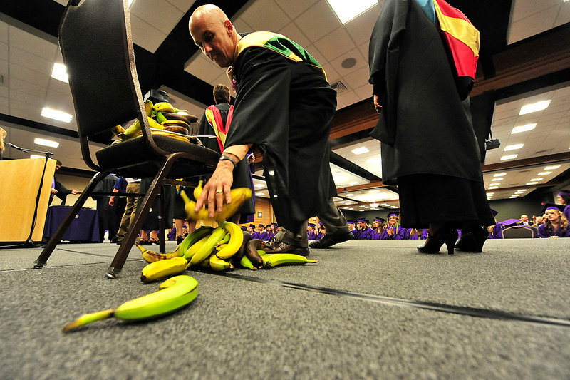 Walt Hester | Trail Gazette<br /> Estes Park High School principal Jeff Lund piles up bananas at the high school grduation on Friday. Graduates gave their principal one last gift, bananas, on their way out.