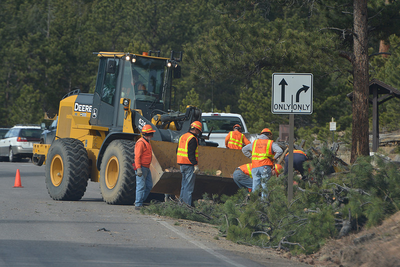 07EPCEar Road Hogs.jpg The national park's volunteer road crew, the Road Hogs, help gather and clear downed trees along Deer Ridge Junction on Monday. The park depends on the army of volunteers who help visitors, erect fences and maintain roads and roadsides.