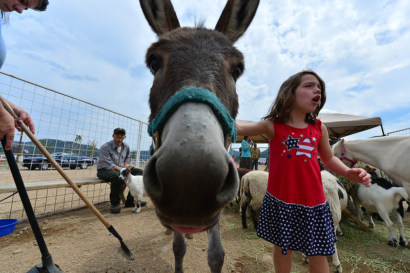 Walt Hester | Trail-Gazette<br /> A little girl enjoys the different creatures of the Biodiversity Festival's petting zoo on Friday. The two-day festival offered ample opportunity for children to enjoy hands-on learning.