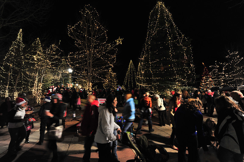 Visitors get the early look at holiday lights on Riverside Plaza on Saturday. The tree lighting ceremony this weekend involved most of the trees in the plaza, to the delight of holiday revelers.