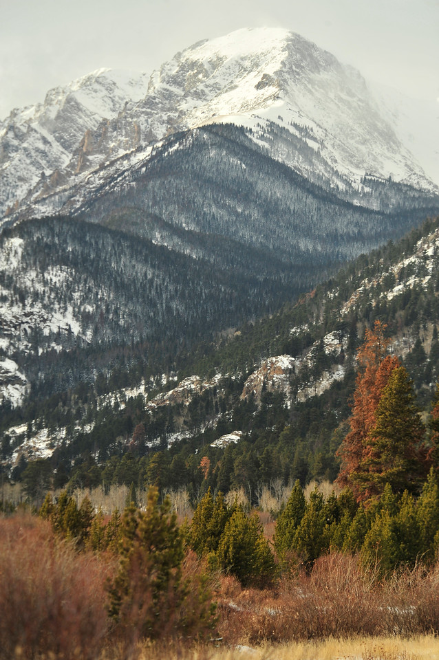 Walt Hester | Trail-Gazette<br /> Snow and leafless trees creat the muted landscape of winter in Rocky Mountain National Park on Wednesday.