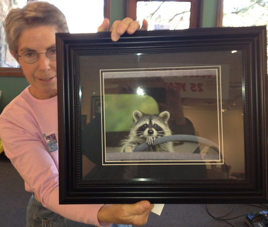 art1.jpg Driving Miss Daisy? Nature photographer Carol Gregory and friend show their work at the Art Center of Estes Park, through December.