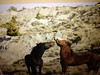 art3.jpg One of Carol Gregory's favorite subjects is wild horses.