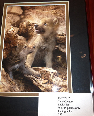 art4.jpg Carol Gregory's portrait of wolf pups is on display at the Art Center.