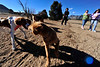 Walt Hester | Trail-Gazette<br /> Michelle Purdy, Amy Nalls and Casey Cusick watch their dogs, Quick Draw, Charlie and Strider, romp through the Estes Valley Dog Park on Wednesday. The warm weather presented a perfect day to play for dogs and their best friends.