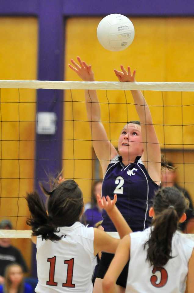Photo by Walt Hester<br /> Faith Weible blocks a Mead hit on Tuesday. The Ladycats a<br /> have enjoyed some success as of late, beating the Lady Mavericks 3-2