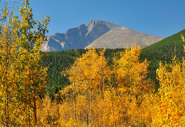 Photo by Walt Hester<br /> Longs Peak looms over aspens near Lily Lake on Wednesday. Trees are changing at higher elevations, and beginning to turn in town.