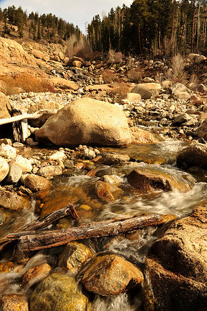Walt Hester | Trail Gazette<br /> Morning sun bathes the rocks and logs in the Alluvial Fan, melting ice that forms overnight. With spring on its way, many of the park's falls and cascades are reemerging from their snow and ice-covered hibernations.