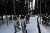 Walt Hester   Trail-Gazette<br /> A glut of hikers heads back to the Bear Lake parking lot. Year round, Bear Lake is a very popular hike in the National Park.