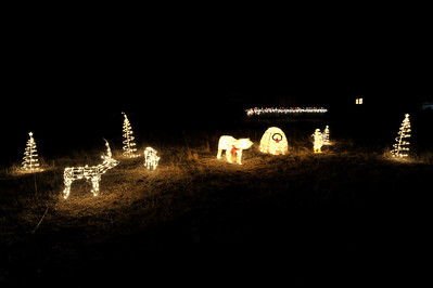 Walt Hester | Trail-Gazette The bear and penguin in this simple display seem to be a little soft compared with the trees and deer. The bear and penguin moved.