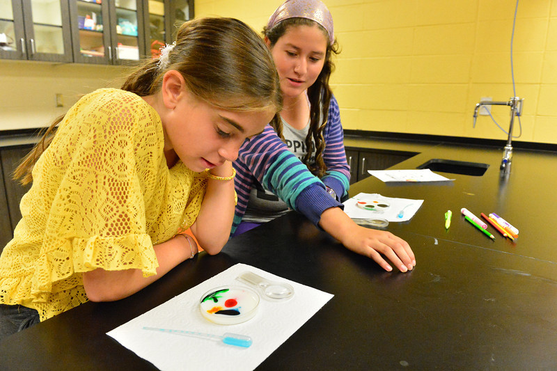 Vivian Drodke and Paulina Tapia, both 11, observe food coloring in milk on Wednesday. The first science experiment for the new middle-schoolers wasdesigned to teach them to watch and evaluate their work in order to reach conclusions.